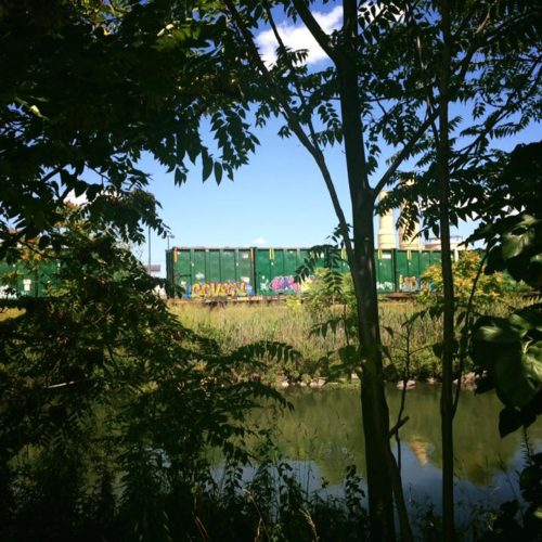 Garbage train across Bronx Kill, from Randalls Island, August 7, 2016