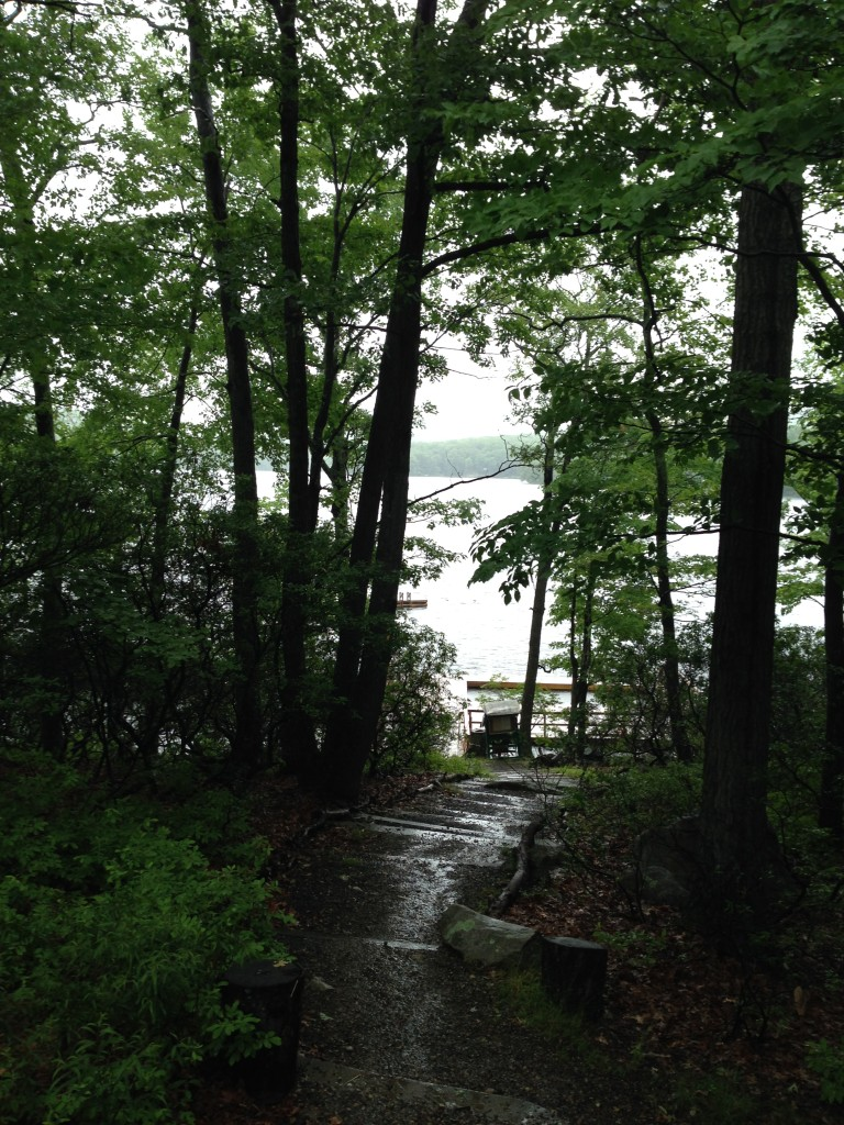 Sebago path to water